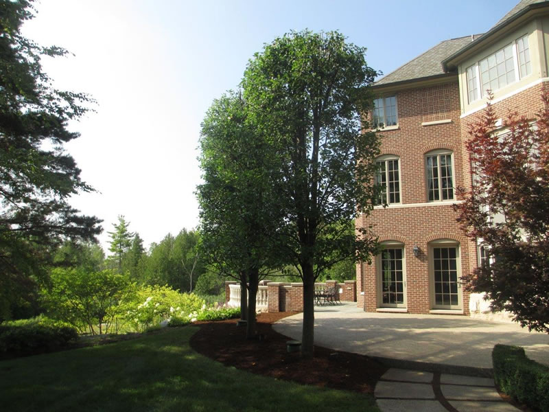 Bruce Township Landscape / Hardscape Design & Installation - Patio