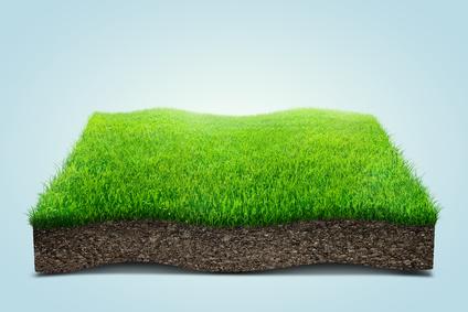 Healthy Lawn Advice - Michigan Landscaper
